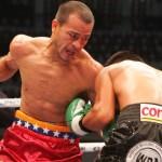 Cermeño-Terrazas in WBA Eliminator, February 5th