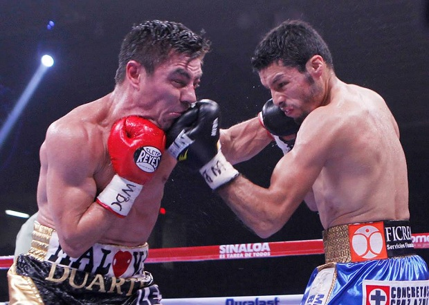 gonzalez-arce fight