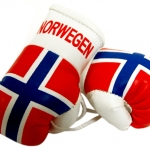 Norway Legalizes Boxing After Three-Decade Ban