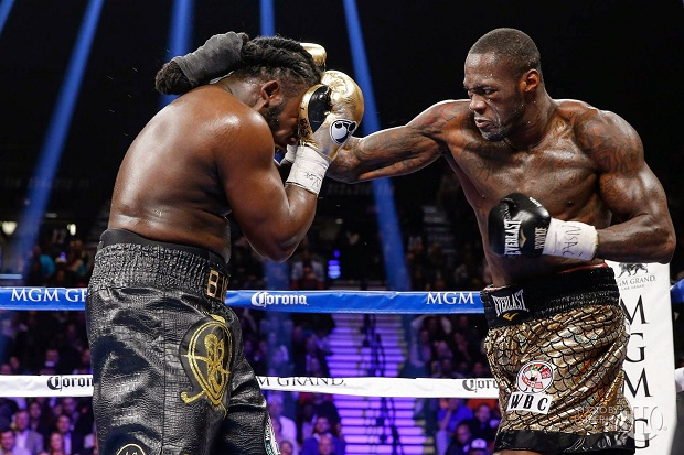 wilder-stiverne fight 2