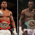Joshua vs. Wilder: Boxing's Next Mega-Fight