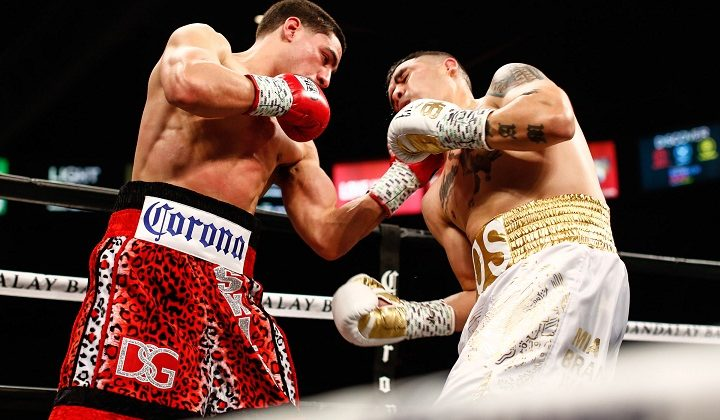 Tips for betting in upcoming boxing matches